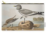 Fork-tailed Gull Carry-all Pouch