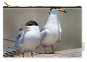 Forster's Terns Carry-all Pouch