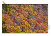 Fort Mountain State Park Cool Springs Overlook Carry-all Pouch
