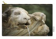 Fountain Detail Carry-all Pouch
