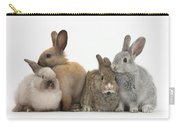 Four Baby Rabbits Carry-all Pouch