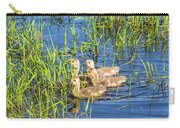 Four Goslings Carry-all Pouch