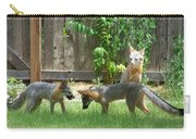Fox Family Carry-all Pouch by Deleas Kilgore