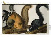 Fox Squirrel Carry-all Pouch by John James Audubon