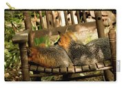Foxes In A Chair Carry-all Pouch