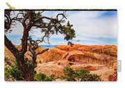 Framed Arch Carry-all Pouch by Chad Dutson