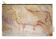 France: Cave Art Carry-all Pouch
