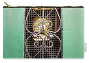 French Quarter Window To The Courtyard Carry-all Pouch