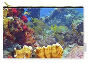 French Reef 1 Carry-all Pouch