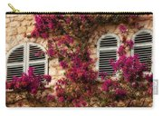 French Windows Carry-all Pouch