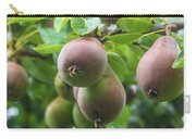 Fresh Pears Carry-all Pouch