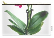 Fresh Pink Orchid In Pot Carry-all Pouch