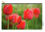 Fresh Spring Tulips Flowers With Water Drops In The Garden  Carry-all Pouch