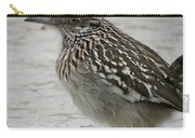 Friendly Roadrunner Carry-all Pouch