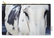 Friendly Route 66 Burro Carry-all Pouch