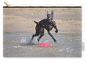 Frisbee On The Beach Carry-all Pouch