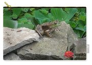 Frog On A Rock Carry-all Pouch