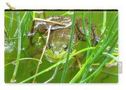 Frog Playing Hide N Seek Carry-all Pouch