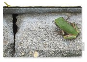 Froggie Carry-all Pouch