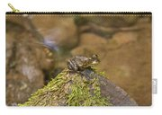 Froggy On A Hill Carry-all Pouch