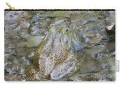 Frogs Eye View Carry-all Pouch