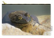 Frogzilla Carry-all Pouch