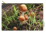 Front Pourch Mushroom Family Carry-all Pouch