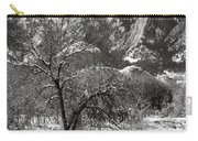 Frosty Flatirons 2 Carry-all Pouch