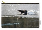 Frosty River Otter  Carry-all Pouch