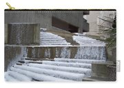 Frozen Fountain Carry-all Pouch