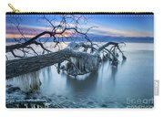 Frozen Morning 2 Carry-all Pouch