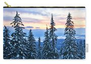 Frozen Reflection 2 Carry-all Pouch