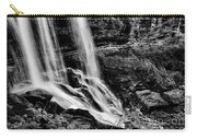 Fry Falls Overlook Carry-all Pouch