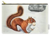 Fuertes, Louis Agassiz 1874-1927 - Burgess Animal Book For Children 1920 Red Squirrel Carry-all Pouch