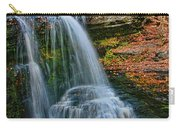 Fulmer Falls - Childs State Park Carry-all Pouch
