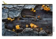 Fungi On Log Carry-all Pouch