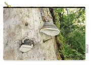Fungus Grows On A Tree Trunk Carry-all Pouch