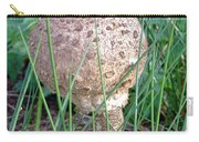 Funky Fungi   Carry-all Pouch