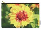 Gaillardia Flowers Carry-all Pouch