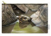 Galapagos Giant Tortoise In Pond Behind Another Carry-all Pouch