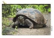 Galapagos Giant Tortoise Walking Down Gravel Path Carry-all Pouch