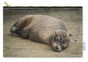 Galapagos Sea Lion Sleeps On Sandy Beach Carry-all Pouch