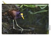 Gallinule Carry-all Pouch