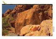 Gambels Quail In Profile Valley Of Fire Carry-all Pouch