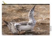 Gannet Chick 1 Carry-all Pouch