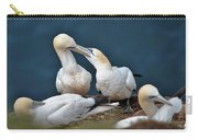 Gannet Feeding Young Carry-all Pouch