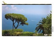 Garden And Bay Of Naples Carry-all Pouch