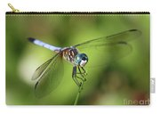 Garden Dragonfly Carry-all Pouch