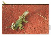 Geico Carry-all Pouch
