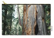 General Grant Grove Sequoia Carry-all Pouch